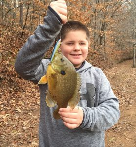 2017_Feb.3_Bam with Blue Gill