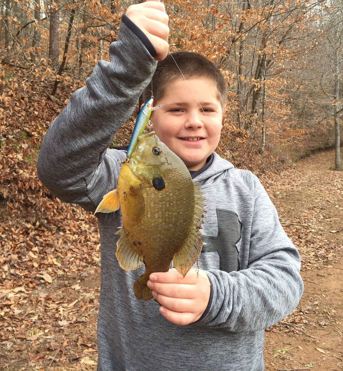 2017 Feb 3 Bam With Blue Gill